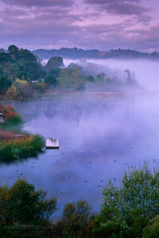 Photo: Early Morning Solitude - Fisherman at the Lafayette Reservoir, Lafayette, Contra Costa County, California