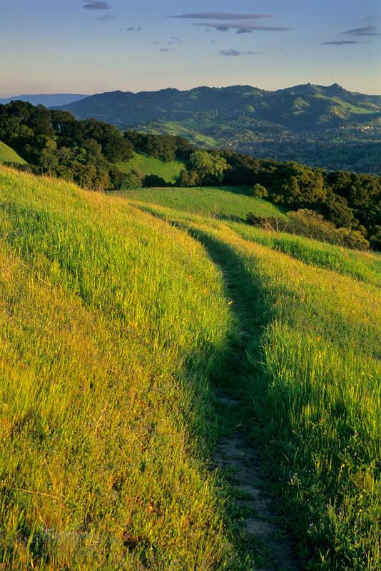 Photo: Sunset light on green hills and trail along Lafayette Ridge, Lafayette, California