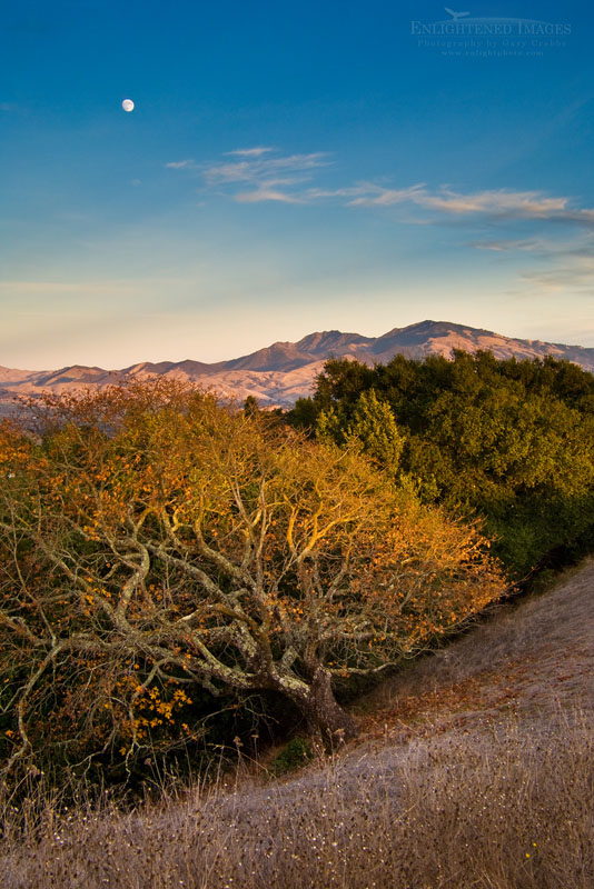 Photo: Moon over Mount Diablo at sunset as seen from Briones Regional Park, Contra Costa County, Californi