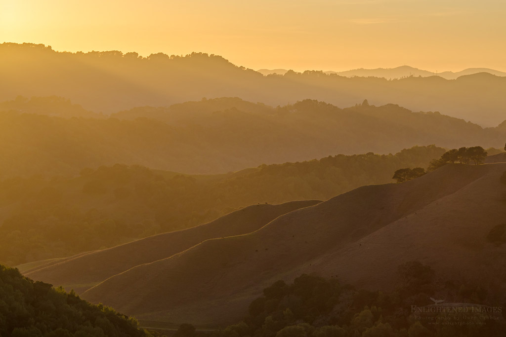 Photo: Sunset light over rolling hills, Briones Regional Park, Contra Costa County, California