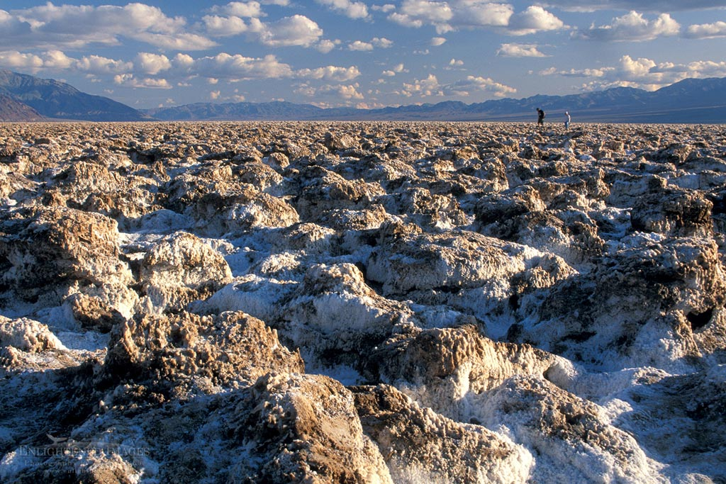 Photo: Tourists walking on salt encrusted rocks at Devlis, Golf Course, Death Valley National Park, California