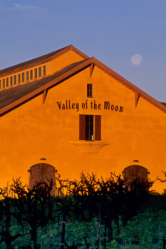 Photo: Moonset at dawn, Valley of the Moon Winery, Sonoma County, California