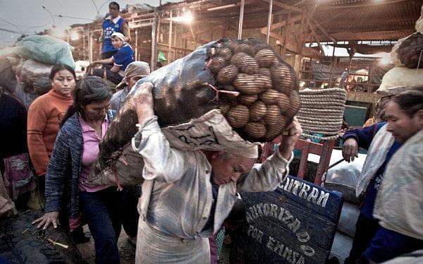 "Juez falla a favor de comerciantes de ""La Parada"""