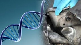 Encontraron ADN femenino en bombas de atentado en Boston