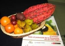 La Feria Expoamazónica 2013 será una excelente oportunidad para dar a conocer las bondades de los productos de la selva peruana.