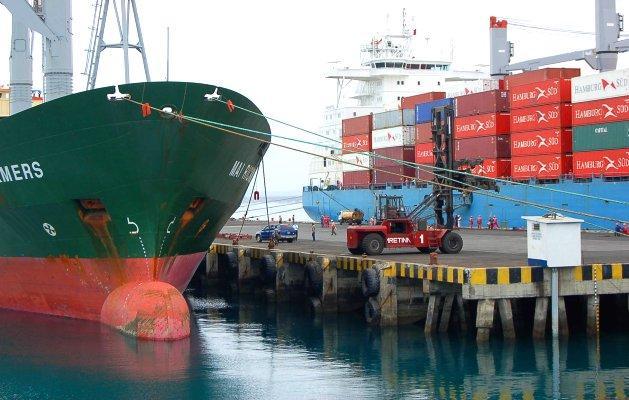 Si se pacta TLC tanto con la India, Israel, Rusia y Turquía; las exportaciones del sector no tradicional crecerían considerablemente.