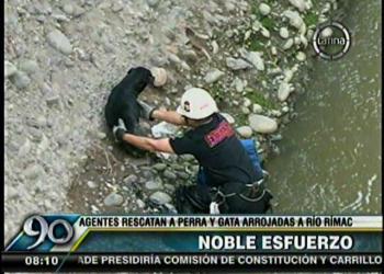 (Video Frecuencia Latina) Impactante rescate de perro y gato lanzados al río Rímac