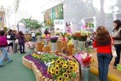 Adex informó que el  97% de peruanos compra flores para el cementerio.