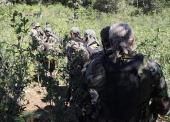 Operativo en el Vraem: Aumentan a 24 detenidos por vínculos con SL