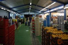 Las frutas y hortalizas frescas peruanas se exportan principalmente a los países de Europa y América del Norte,
