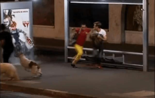 [VIDEO] Chucky 'el muñeco diabólico' desata pánico en Brasil