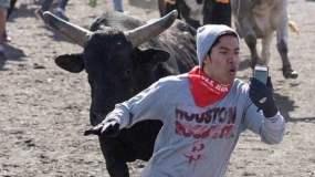FOTO RT / [VIDEO] Se pone delante de toros por una foto selfie 'pal face'