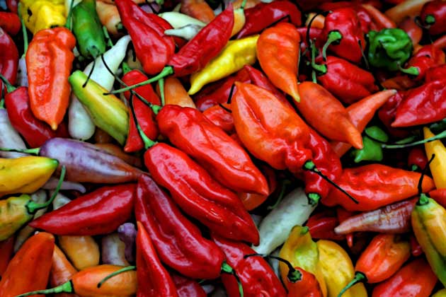 Perú incrementó sus exportaciones de capsicums (ajíes y pimientos).