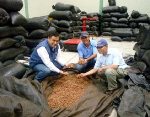Gracias a su participación en la Feria Norte Exporta 2013,  APROCAM de Amazonas concretó el envío de 150 toneladas de cacao nativo para la empresa italiana ICAM S.P.A.