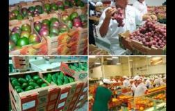Los productos nacionales con valor agregado vienen diversificándose por casi todo el mundo gracias a los acuerdos comerciales suscritos.