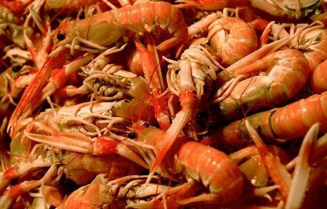 Los langostinos representaron más de la mitad de exportaciones acuícolas.