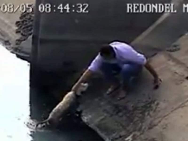 [VIDEO] El emotivo rescate de un perrito gracias a un hombre que arriesgo su vida