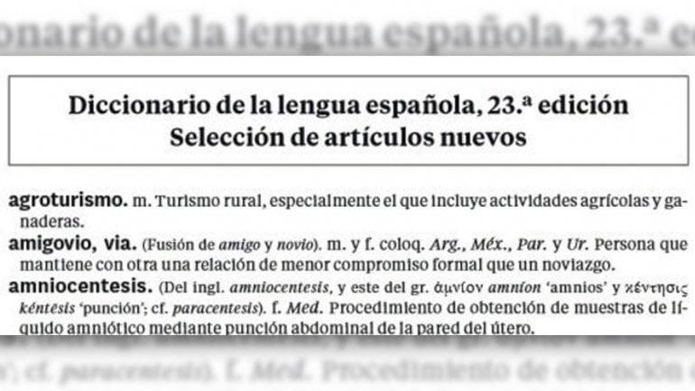 """La RAE acepta """"Amigovio"""", """"lonchera"""" y """"Papichulo"""" como nuevas palabras"""