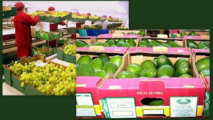 Los envíos del sector agro lideraron las exportaciones peruanas No Tradicionales.