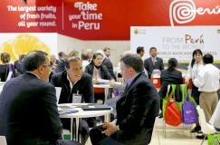 Aproximadamente 300 empresarios peruanos participaron en la Fruit Logistica.