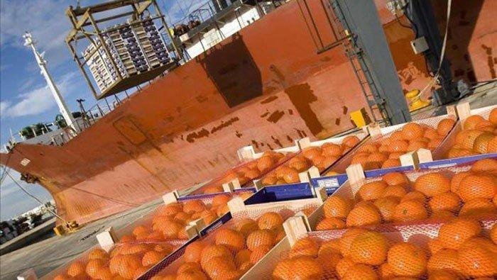 Se estima que Perú podría exportar cerca de 120 mil toneladas de cítricos en la campaña de febrero a setiembre del presente año.