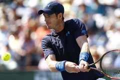 Murray jugó bien y será rival de Djokovic en semifinales.