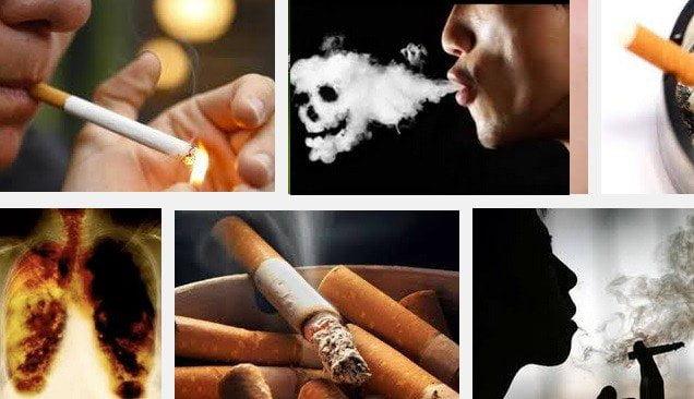 Tabaquismo: Una persona muere cada 6 segundos por fumar en exceso