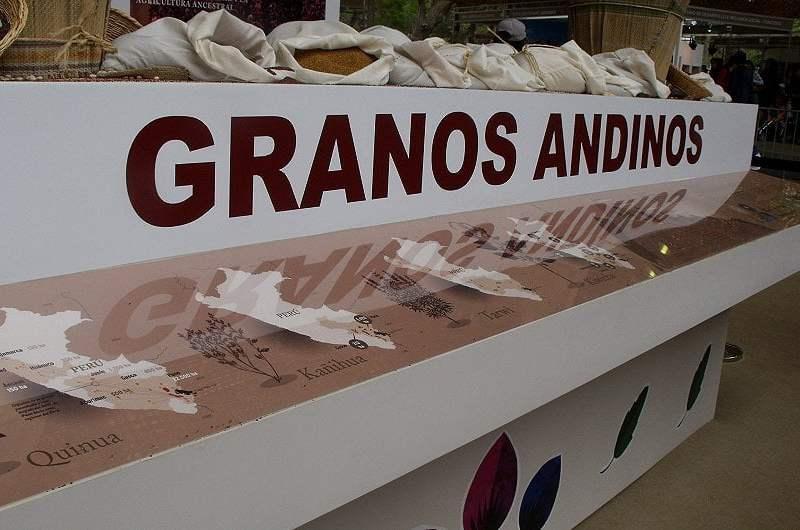 Los granos andinos peruanos fueron exportados a 58 mercados durante los ocho primeros meses.
