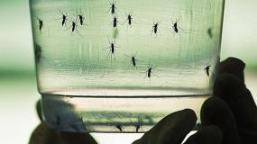 Perú sólo tiene un caso reportado de Zika