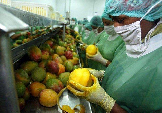 Las exportaciones peruanas del subsector agrario se direccionaron hacia 126 destinos internacionales