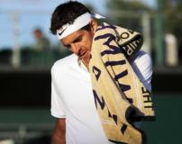 Del Potro no pudo más en Wimbledon.