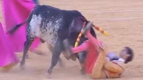 Terrible muerte del torero español Víctor Barrio