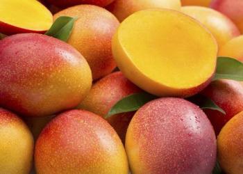 El mango peruano es un potencial producto en Reino Unido.