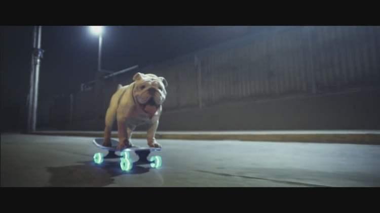 Facebook | Otto, el bulldog skater peruano, protagoniza una campaña en Suiza