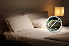 EsSalud recomienda reemplazar las almohadas cada 3 meses