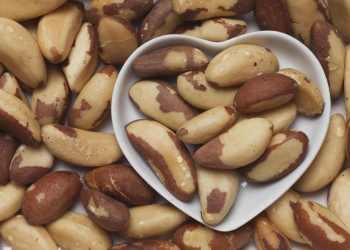 Las nueces de Brasil (castañas) se direccionaron hacia 20 destinos internacionales.