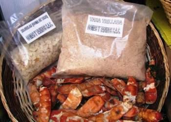 Ingredientes y aditivos peruanos para alimentos