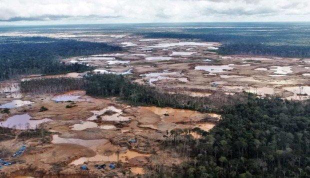 Noruega entregará US$ 230 millones a Perú para reducir deforestación amazónica