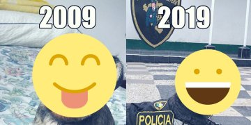 Perrita de la policía sorprende en Facebook con #10YearsChallenge