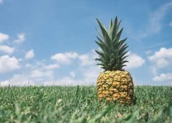 Cinco curiosidades de la piña que no sabías y benefician tu salud