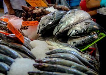 Los pescados, entre alimentos para prevenir el cáncer