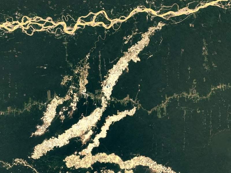 Google Earth Timelapse muestra depredación de bosques en Perú