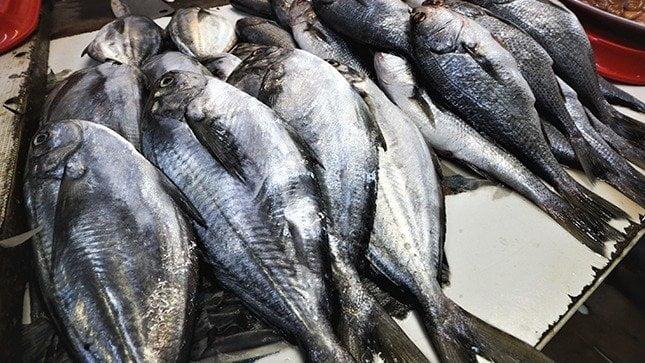 Semana Santa: Sepa cómo seleccionar pescado fresco y sano