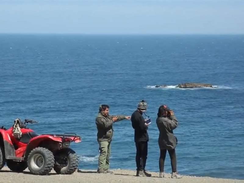 Tu puedes ser guardaparque por un día en Paracas, Pómac y Reserva Titicaca