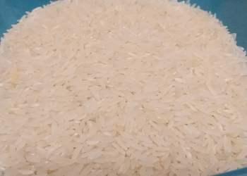 Adex pronostica mayor exportación de arroz peruano