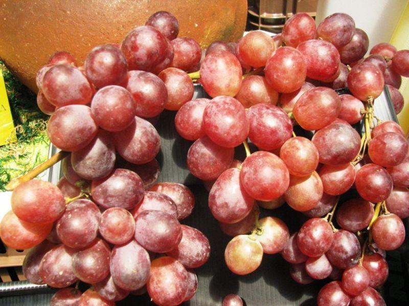 Exportación de uva