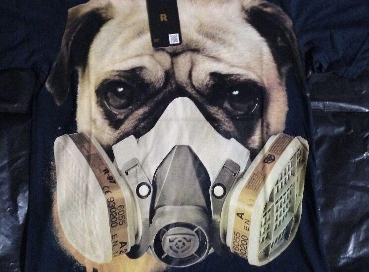 Confirman primer perro contagiado con coronavirus en Hong Kong
