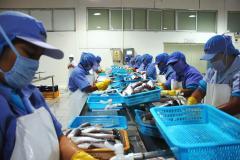 Adex pide nuevo Plan Nacional de Competitividad con sector privado y regiones