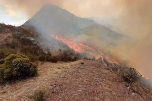 Indeci: Incendio forestal en Concepción y Vilcashuamán fue extinguido