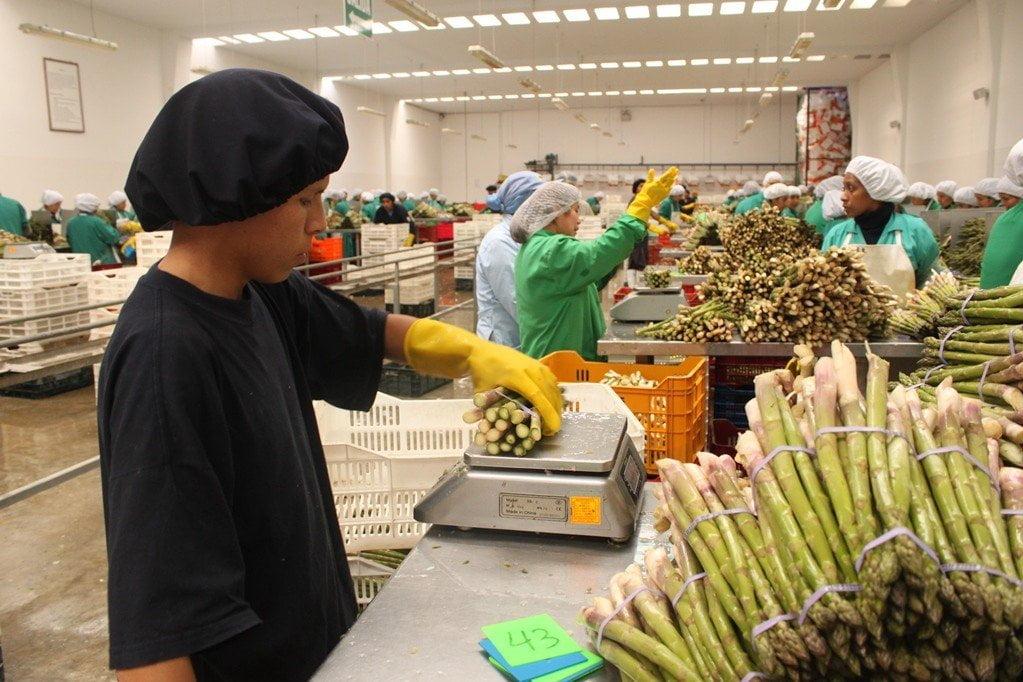 Exportadores peruanos
